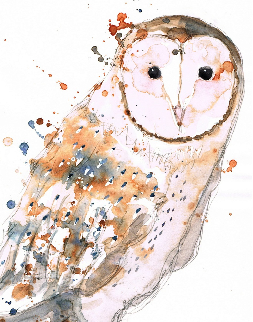 barn owl watercolour