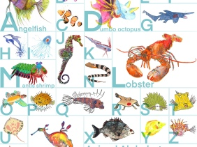Sea life animal alphabet illustration